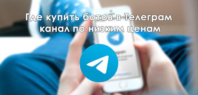 gde-kupit-botov-v-telegram.jpg