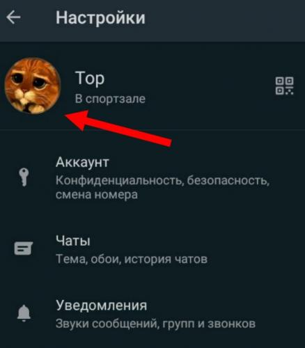 ybrat-foto-profilya-whatsapp3.jpg