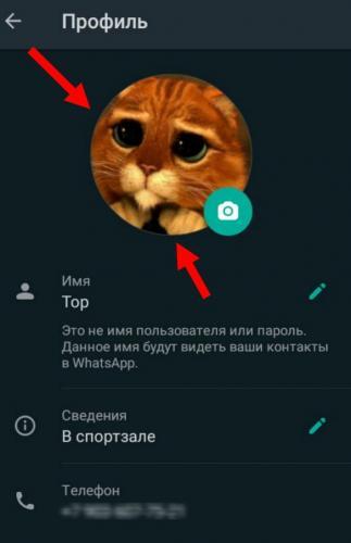 ybrat-foto-profilya-whatsapp4.jpg