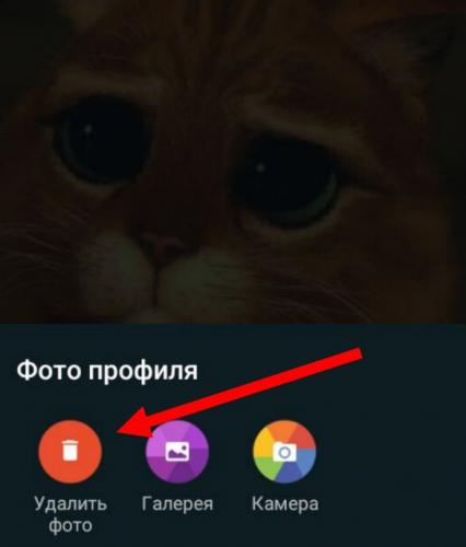 ybrat-foto-profilya-whatsapp6.jpg