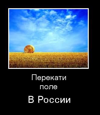 Перекати поле в России.