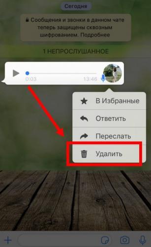 ydalit-golosovye-soobshcheniya-v-Vatsap4.jpg