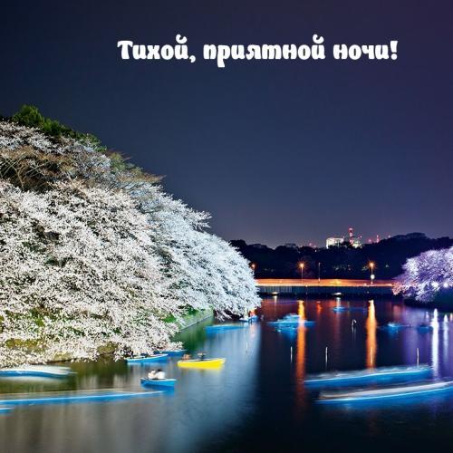 Тихой, приятной ночи!.