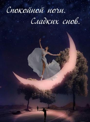 Спокойной ночи. Сладких снов..