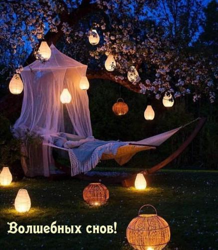 Волшебных снов!.