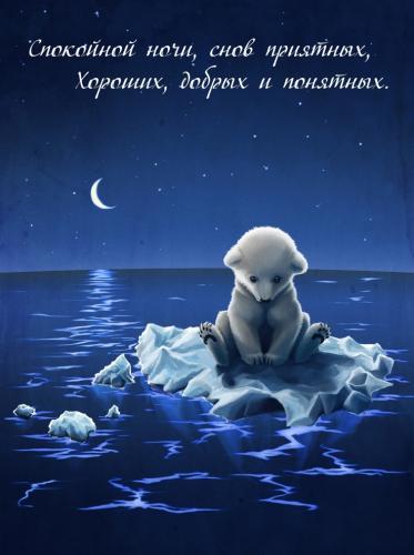 Спокойной ночи, снов приятных, хороших, добрых и понятных..