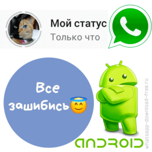 whatsapp-status-android-logo-300x300.png