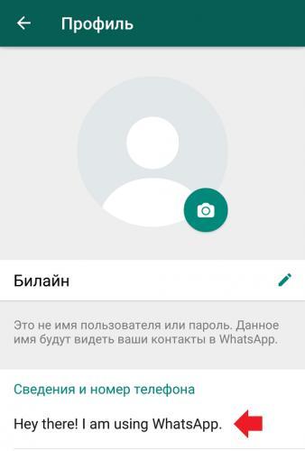 chto-oznachaet-svedeniya-v-vatsape1.png