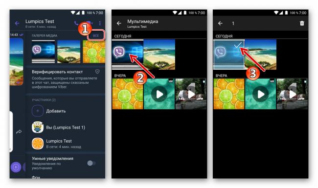 Viber-dlya-Android-vybor-udalyaemyh-iz-chata-fotografij-v-Galeree-Media.png