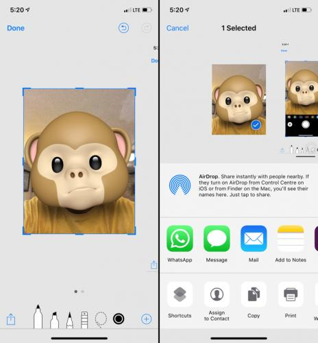 How-to-Share-Animoji-or-Memoji-With-Any-App-iPhone-4.png