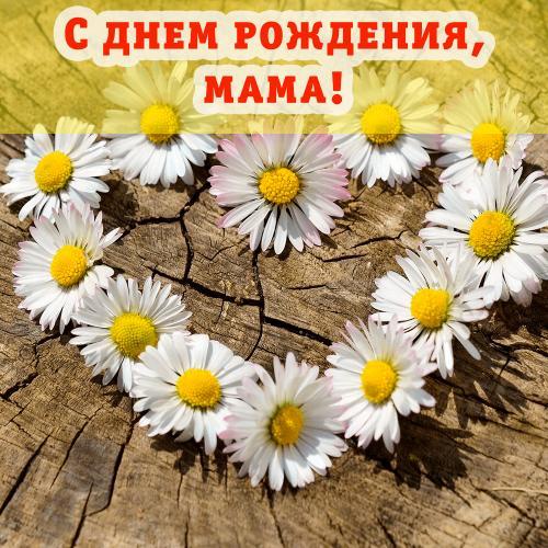 Поздравление-для-мамы-на-фоне-сердца-из-ромашек.png