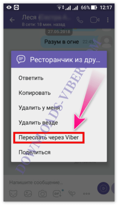 how-to-copy-and-send-message-in-viber-screenshot-04-231x400.png