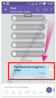 how-to-copy-and-send-message-in-viber-screenshot-06-231x400.png