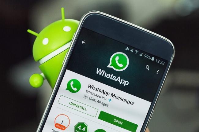 WhatsApp-Dengi-6.jpg