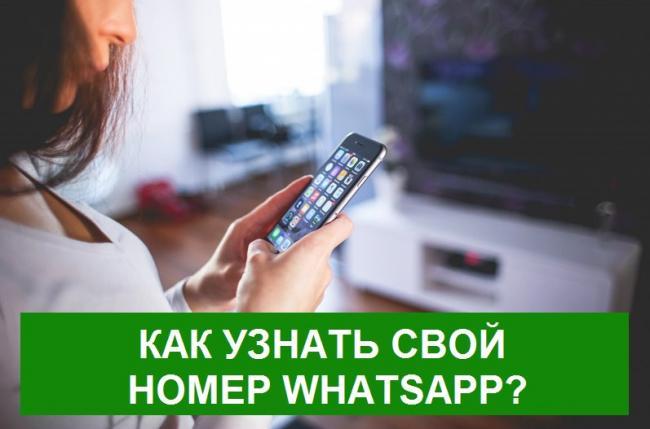 kak-yznat-svoi-nomer-whatsapp.jpg