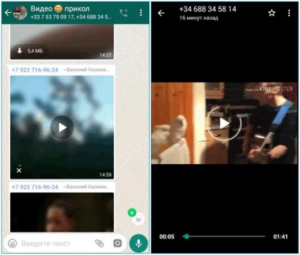 prosmotr-video-v-whatsapp.png