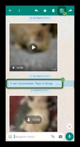 Kopirovat-soobshhenie-iz-WhatsApp.png